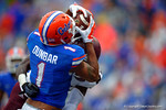 Florida Gators wide receiver Quinton Dunbar makes the catch in the endzone for a touchdown in the fourth quarter.  Florida Gators vs Miami Hurricanes.  November 17th, 2014. Gator Country photo by David Bowie.
