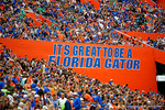 Its Great To Be A Florida Gator.  Florida Gators vs Eastern Kentucky Colonels.  November 22th, 2014. Gator Country photo by David Bowie.