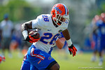 Florida Gators linebacker Jeremi Powell picks off a pass and sprints upfield.  Florida Gators Third Spring Practice.  March 20th, 2016. Gator Country photo by David Bowie.