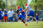 Florida Gators wide receiver C'yontai Lewis makes the catch and sprints past linebacker Alex Anzalone.  Florida Gators Third Spring Practice.  March 20th, 2016. Gator Country photo by David Bowie.