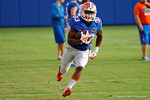 Florida Gators running back Tyriek Hopkins rushes upfield during the Florida Gators open practice.  August 27th, 2015.  Gator Country Photo by David Bowie.