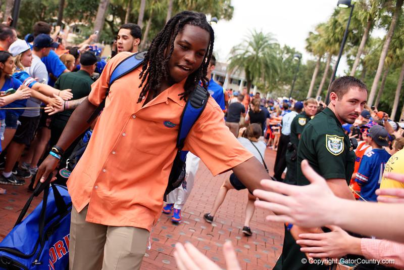 Gator Walk, Florida Gators, University of Florida, Florida Football