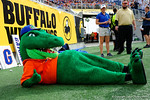 Albert takes a break during the first half as the Univeristy of Florida Gators and the University of Michigan Wolverines square off in the 2016 Buffalo Wild Wings Citrus Bowl.  Orlando, Fl.  January 1st, 2015. Gator Country photo by David Bowie.