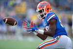 Florida Gators linebacker Darius Singletary during pre-game warm ups as the Univeristy of Florida Gators and the University of Michigan Wolverines square off in the 2016 Buffalo Wild Wings Citrus Bowl.  Orlando, Fl.  January 1st, 2015. Gator Country photo by David Bowie.