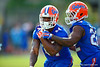 Florida Gators running back Kelvin Taylor grips onto the ball as Florida Gators running back Adam Lane Jr. tries to strip away the ball during a fumble drill.  Florida Gators running back Kelvin Taylor Florida Gators Spring Practice.  March 18th, 2016. Gator Country photo by David Bowie.