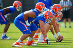 The offensive line gets set during a practice drill.  Florida Gators Spring Practice.  March 18th, 2016. Gator Country photo by David Bowie.