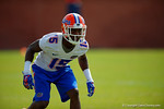 Florida Gators defensive back Deiondre Porter drops back into coverage.  Florida Gators Spring Practice.  March 18th, 2016. Gator Country photo by David Bowie.