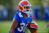 Florida Gators tight end Ryan Ferguson rushes with the ball after making a catch during a passing drill.  Florida Gators Spring Practice.  March 18th, 2016. Gator Country photo by David Bowie.