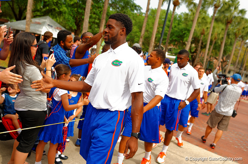 The Florida Gators march into the stadium for the Orange and Blue Debut during Gator Walk.  2015 Orange and Blue Debut.  April 11th 2015. Gator Country photo by David Bowie.