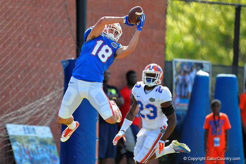 Florida Gators wide receiver C.J. Worton leaps into the air for the catch during football spring practice.  Florida Gators Football Spring Practice.  March 25th, 2016. Gator Country photo by David Bowie.