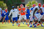 Florida Gators quarterback Skyler Mornhinweg looks downfield during a drill.  Florida Gators Football Sixth Spring Practice.  March 25th, 2016. Gator Country photo by David Bowie.