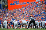 Florida Gators kicker Austin Hardin misses his second field goal of the day during the second half as the Florida Gators take on the Florida Atlantic University Owls.  November 21st, 2015. Gator Country photo by David Bowie.