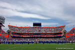 The Florida Gators band performs before kickoff as the Florida Gators take on the Florida Atlantic University Owls.  November 21st, 2015. Gator Country photo by David Bowie.