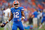 Florida Gators quarterback Josh Grady during the Gators 61-13 win over New Mexico State to start the 2015 season.  September 5th, 2015.  Gator Country Photo by David Bowie.
