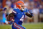 Florida Gators running back Brandon Powell sprints upfield on the opening kickoff during the Gators 61-13 win over New Mexico State to start the 2015 season.  September 5th, 2015.  Gator Country Photo by David Bowie.