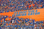 Fans cheer on their Gators during the Gators 61-13 win over New Mexico State to start the 2015 season.  September 5th, 2015.  Gator Country Photo by David Bowie.
