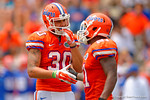 Florida Gators tight end DeAndre Goolsby and Florida Gators running back Kelvin Taylor having fun during the 2015 Orange and Blue Debut.  April 11th 2015. Gator Country photo by David Bowie.