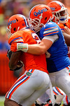 Florida Gators offensive lineman Matthew Fuchs makes a tackle on Florida Gators running back Kelvin Taylor during the 2015 Orange and Blue Debut.  April 11th 2015. Gator Country photo by David Bowie.