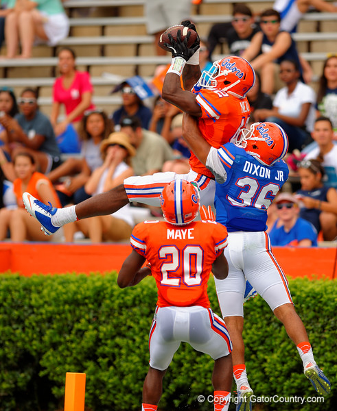Florida Gators defensive back Keanu Neal leaps into the air trying to make the interception during the 2015 Orange and Blue Debut.  April 11th 2015. Gator Country photo by David Bowie.