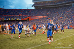 The Florida Gators sotrm the field after the win as the Gators come from behind late in the fourth quarter at home to beat the Tennessee Volunteers 28-27.  September 26th, 2015. Gator Country photo by David Bowie.