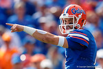 Florida Gators quarterback Will Grier directing the offense as the Gators come from behind late in the fourth quarter at home to beat the Tennessee Volunteers 28-27.  September 26th, 2015. Gator Country photo by David Bowie.