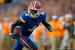 Florida Gators running back Brandon Powell sprints toward the endzone during the second half as the Gators come from behind late in the fourth quarter at home to beat the Tennessee Volunteers 28-27.  September 26th, 2015. Gator Country photo by David Bowie.