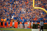 Gator fans celebrate as Florida Gators running back Kelvin Taylor rushes into the endzone during the second half as the Gators come from behind late in the fourth quarter at home to beat the Tennessee Volunteers 28-27.  September 26th, 2015. Gator Country photo by David Bowie.