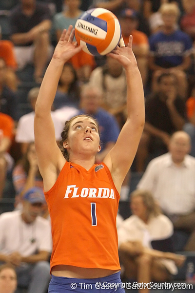 photo by Tim Casey<br /> <br /> Florida freshman setter Cindy Bathelt sets the ball during the Gators' sweep of the South Carolina Gamecock on Wednesday, October 15, 2008 at the Stephen C. O'Connell Center in Gainesville, Fla.