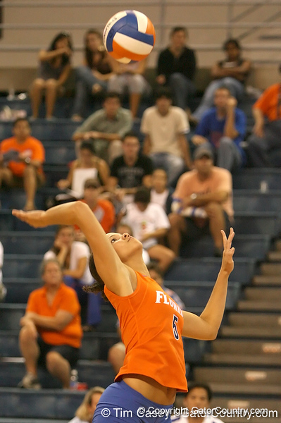 photo by Tim Casey<br /> <br /> Florida sophomore outside hitter Callie Rivers makes an attack during the Gators' sweep of the South Carolina Gamecock on Wednesday, October 15, 2008 at the Stephen C. O'Connell Center in Gainesville, Fla.