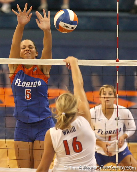 080824_RiversCallie_6561_TCasey<br /> <br /> photo by Tim Casey<br /> <br /> during the Florida volleyball team's annual Fan Day and Orange and Blue Scrimmage on Sunday, August 24, 2008 at the Stephen C. O'Connell Center in Gainesville, Fla.