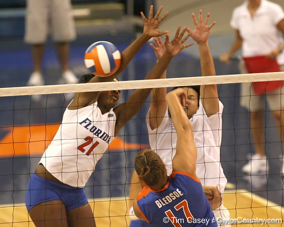 080824_AndersonCassandra_6493_TCasey<br /> <br /> photo by Tim Casey<br /> <br /> during the Florida volleyball team's annual Fan Day and Orange and Blue Scrimmage on Sunday, August 24, 2008 at the Stephen C. O'Connell Center in Gainesville, Fla.