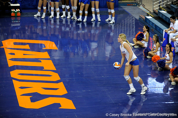 UF freshman Colleen Ward prepares to take serve during the third set. The Gators clinched their last home game with a 3-0 win over the Crimson Tide at the O'Connell Center on Saturday, November 23, 2008. (Casey Brooke Lawson / Gator Country)