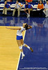 UF sophomore Callie Rivers serves the ball during the third set. The Gators clinched their last home game with a 3-0 win over the Crimson Tide at the O'Connell Center on Saturday, November 23, 2008. (Casey Brooke Lawson / Gator Country)