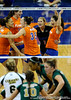 The UF volleyball team celebrates after scoring a point over Colorado State. The Gator's were triumphant over the Rams 3-0 in Gainesville, Fla on December 6, 2008. (Casey Brooke Lawson)