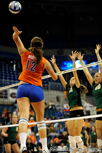 UF freshman Kelly Murphy spikes the ball to Colorado State. The Gator's were triumphant over the Rams 3-0 in Gainesville, Fla on December 6, 2008. (Casey Brooke Lawson)