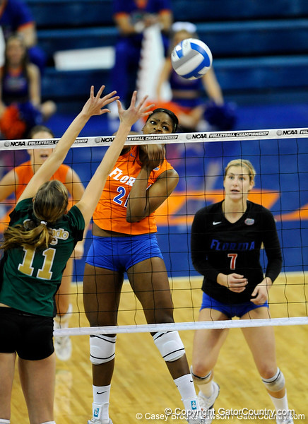 UF freshman Cassandra Anderson spikes the ball to Colorado State. The Gator's were triumphant over the Rams 3-0 in Gainesville, Fla on December 6, 2008. (Casey Brooke Lawson)