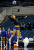 UF junior Elyse Cusack serves the ball over the net to Colorado State. The Gator's were triumphant over the Rams 3-0 in Gainesville, Fla on December 6, 2008. (Casey Brooke Lawson)
