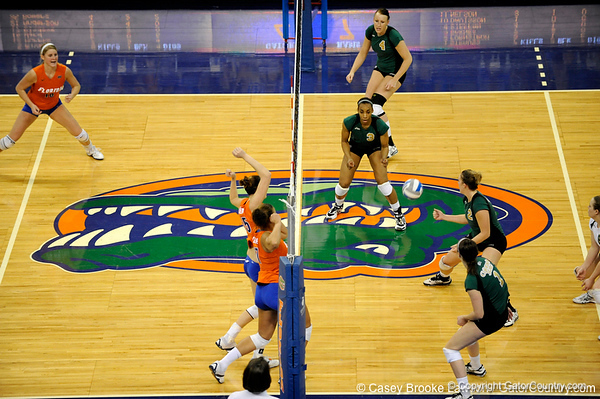 UF senior Kelsey Bowers spikes a ball to Colorado State and scores a point. The Gator's were triumphant over the Rams 3-0 in Gainesville, Fla on December 6, 2008. (Casey Brooke Lawson)