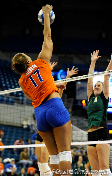 Sophomore Lauren Bledsoe hits to ball to Colorado State. The Gator's were triumphant over the Rams 3-0 in Gainesville, Fla on December 6, 2008. (Casey Brooke Lawson)