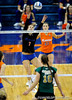 UF junior Elyse Cusack hits the ball to Colorado State. The Gator's were triumphant over the Rams 3-0 in Gainesville, Fla on December 6, 2008. (Casey Brooke Lawson)