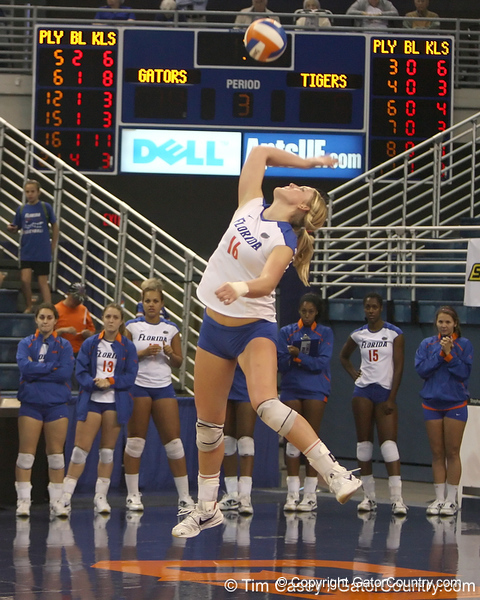Florida sophomore outside hitter Colleen Ward serves during the Gators' 3-0 win against the Auburn Tigers on Sunday, November 8, 2009 at the Stephen C. O'Connell Center in Gainesville, Fla. / Gator Country photo by Tim Casey