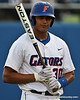 Florida redshirt sophomore Vickash Ramjit was not pleased after getting struck out during the Gators' 4-1 victory over the University of North Florida Ospreys on Wednesday, May 11, 2011 at McKethan Stadium in Gainesville, Fla. / photo by Rob Foldy