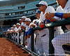 Florida junior Preston Tucker watches warmups before the Gators' game against the Texas Longhorns in the College World Series on Saturday, June 18, 2011 at TD Ameritrade Park in Omaha, Neb. / Gator Country photo by Tim Casey