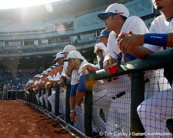 Florida players watch from the dugout before the Gators' game against the Texas Longhorns in the College World Series on Saturday, June 18, 2011 at TD Ameritrade Park in Omaha, Neb. / Gator Country photo by Tim Casey