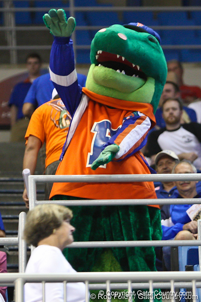 Florida mascot Albert during the Gators' 114-57 win over the Catholic Cardinals on Thursday, November 3rd, 2011 at the Steven C. O'Connell Center in Gainesville, Fla./Gator Country photo by Rob Foldy