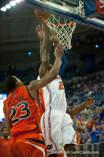 Florida sophomore forward Casey Prather powers 2 points during the Gators' 63-47 win against the Auburn Tigers on Tuesday, February 21, 2012 at the Stephen C. O'Connell Center in Gainesville, Fla. / Gator Country photo by Saj Guevara