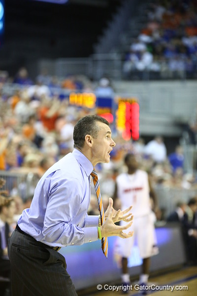 Coach Billy Donovon during Florida's 69-52 win over Kentucky on February 12, 2013 at the Stephen C O'Connell Center in Gainesville, Florida. Pictures taken by Curtiss Bryant for Gatorcountry.com