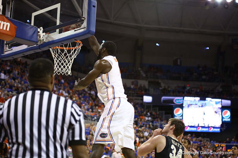 Patric Young dunks during Florida's 66-40 win over Vanderbilt on March 6, 2013 at the Stephen C O'Connell Center in Gainesville, Florida. Photos by Curtiss Bryant for Gatorcountry.com