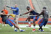 Florida redshirt sophomore tight end Jordan Reed falls down as junior linebacker Jonathan Bostic lets go of the rope during the Gator Charity Challenge event on Friday, July 29, 2011 at Ben Hill Griffin Stadium in Gainesville, Fla. / Gator Country photo by Tim Casey