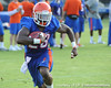 Florida senior running back Jeff Demps runs with the ball during the Gators' football practice on Saturday, August 6, 2011 at Donald R. Dizney Stadium in Gainesville, Fla. / photo courtesy of UF Communications
